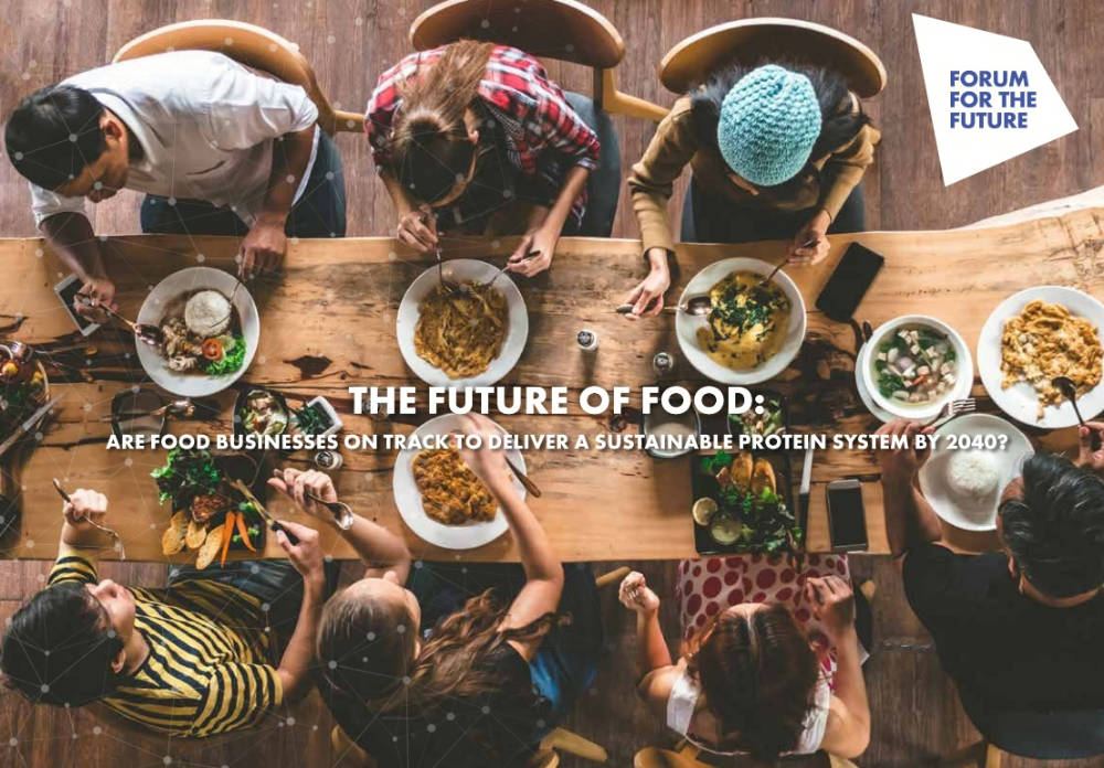 Move beyond plant-based product innovation for sustainable food future, report warns