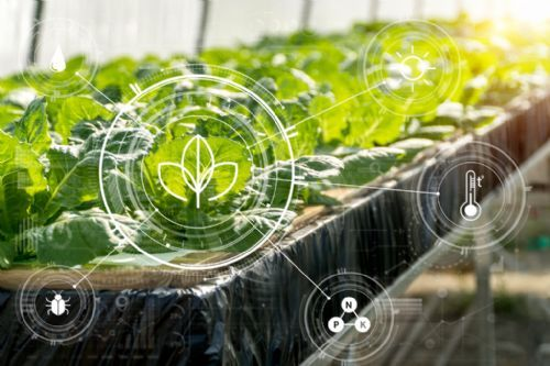 New 'data trust' technology could transform food supply chains, safety and traceability