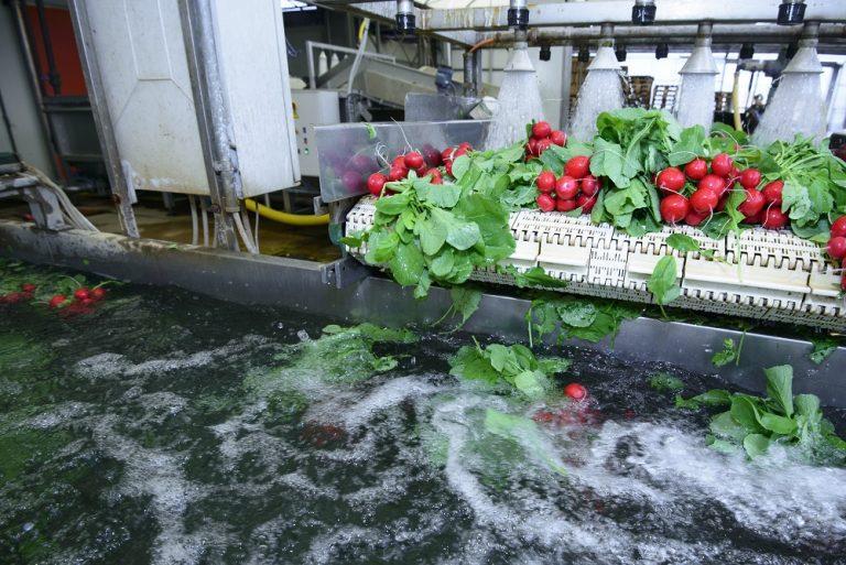 Food & beverage industry urged to adopt water best practice