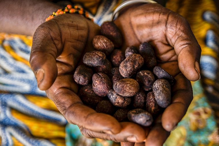 Mars partners with AAK to improve women working in Shea supply chain