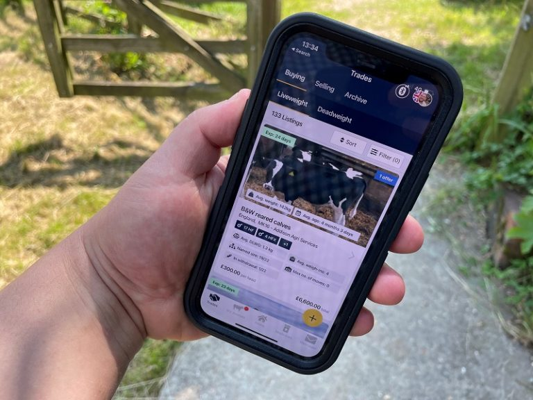Breedr trades £1.85m of cattle since launching