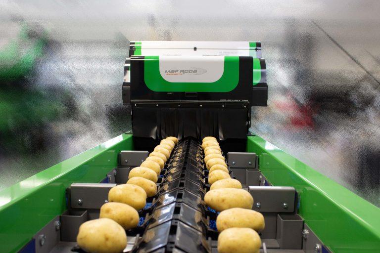 Tong keeps an eye on automation at BP2021